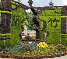 上海立体绿化