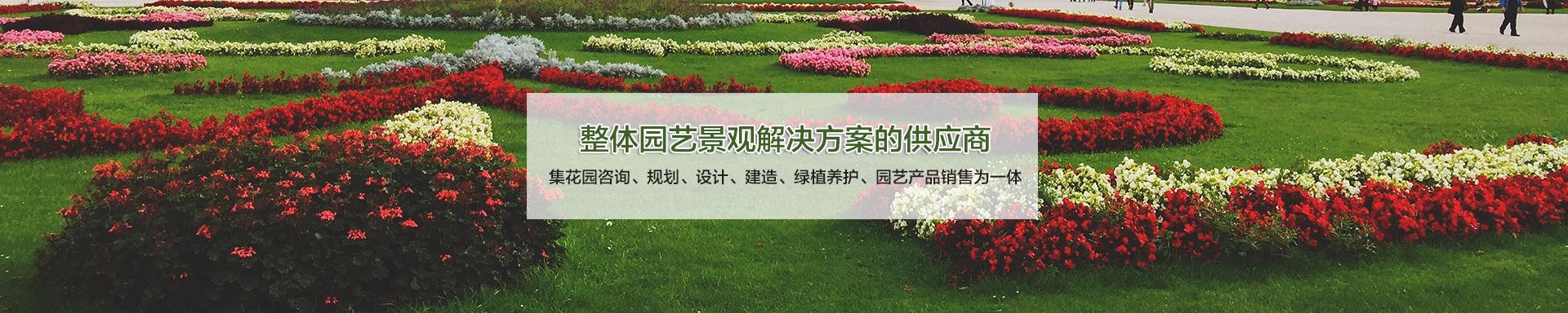 上海立体绿化工程